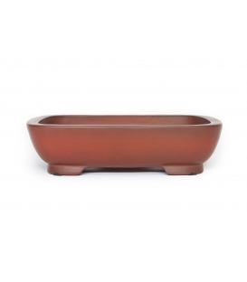 Bonsai Pot Shinto