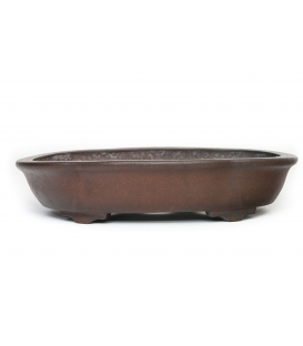 Bonsai Pot Gyozan Yujji Used
