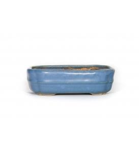 Bonsai Pot Harumatsu Ryokumisai Used
