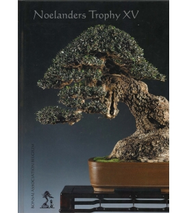 Noelanders Trophy XV