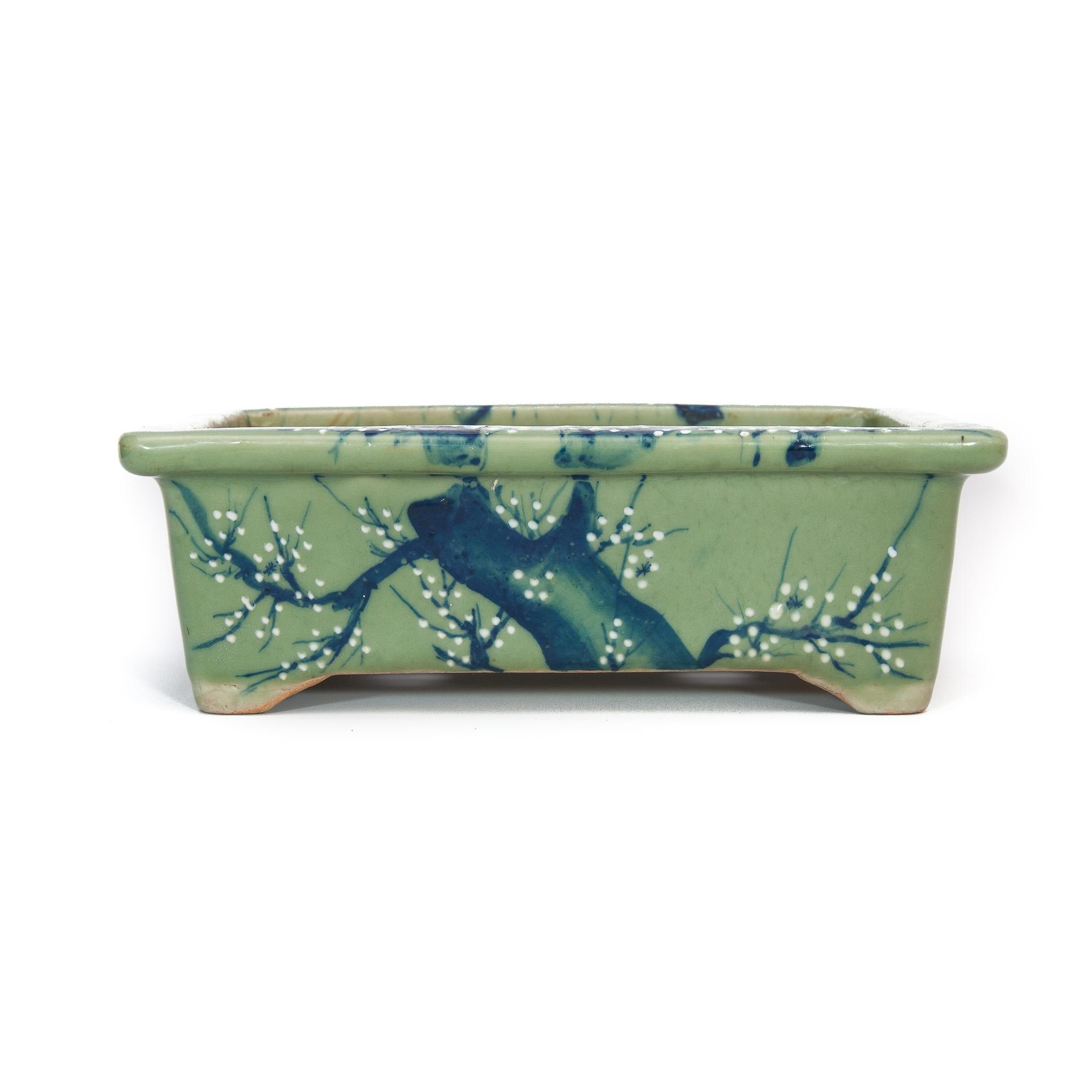 Maceta de bonsai Wabachi Usada