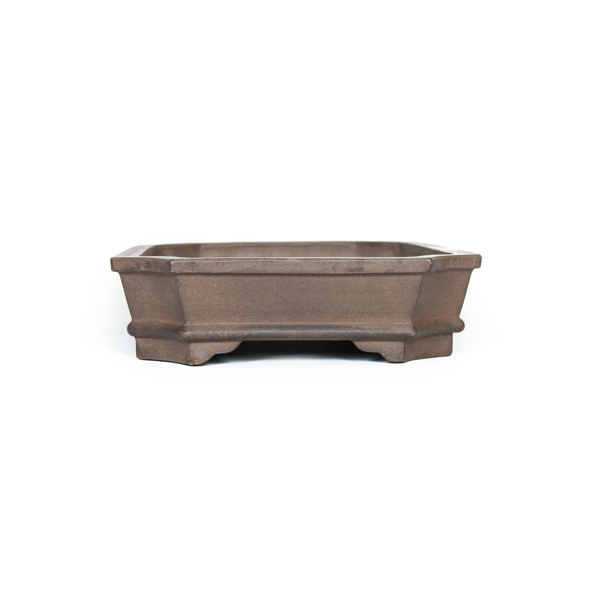 Bonsai Pot Zenigo Used