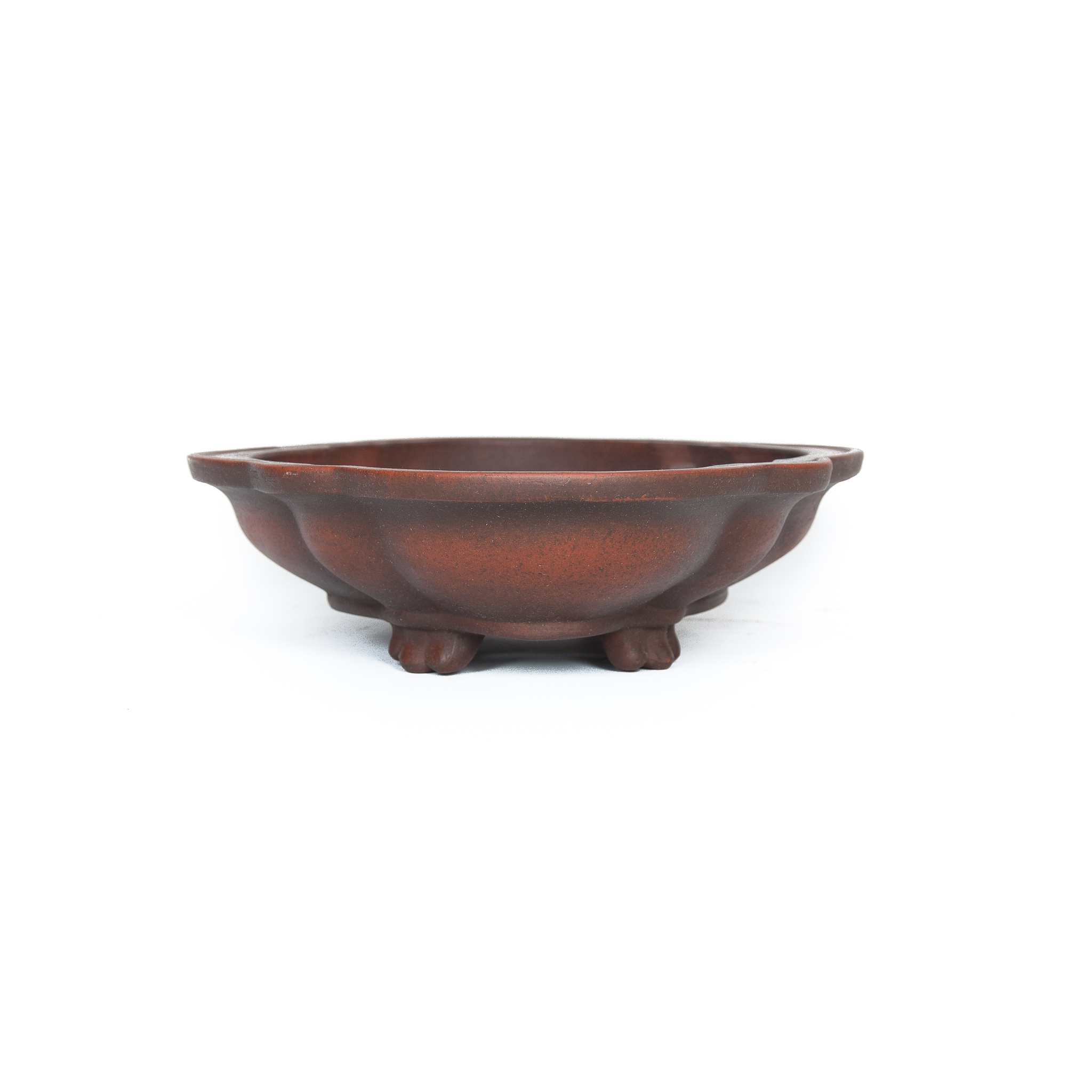 Bonsai Pot Zenigo Used