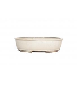 Bonsai Pot Wabachi Used