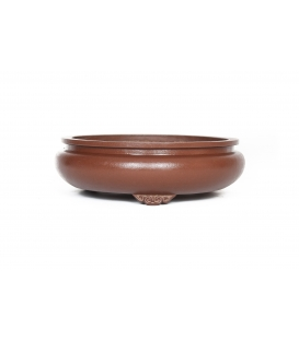 Bonsai Pot Wabachi Used