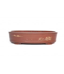 Bonsai Pot China Contemporanea Used