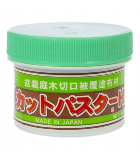 Conifer healing paste 160 g Kaneshin