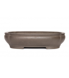 Bonsai Pot Seizan Reiho Used