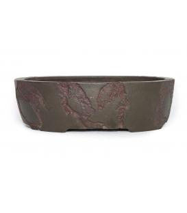 Bonsai usato Yamaaki Koshousen vaso