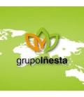 GrupoIñesta
