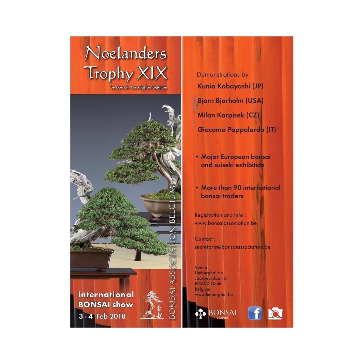 Noelanders Trophy XIX - 3 y 4 de Febrero