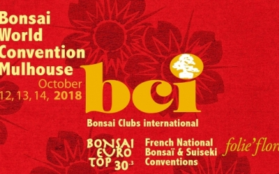 Bonsai World Convention Mulhouse
