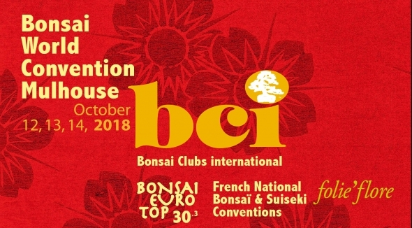 Bonsai Word Convention Mulhouse