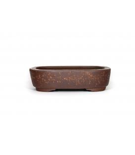 Maceta de bonsai Heian Kosen