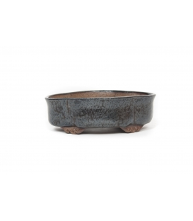 Bonsai Pot Peter Cre