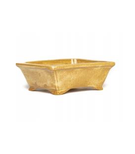 Bonsai Pot Koyo