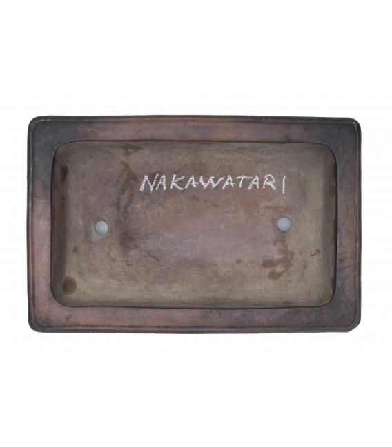 Maceta de Bonsai Nakawatari Usada