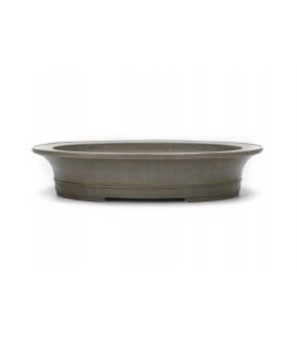 Bonsai-Topf Seizan gebraucht