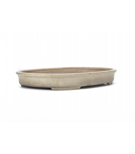 Bonsai Pot Syuhon Used