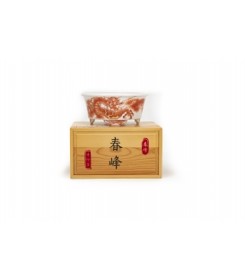 Bonsai-Topf Harumine