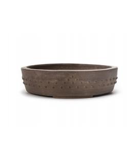 Bonsai-Topf Syuzan gebraucht