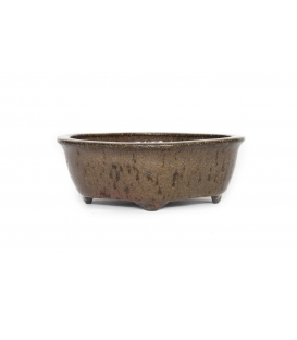 Bonsai Topf Hattori