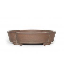 Pot de bonsaï Gyozan Yuuji utilisé