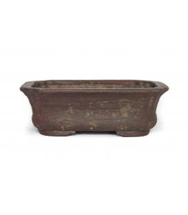 Pot de bonsaï Shuho utilisé
