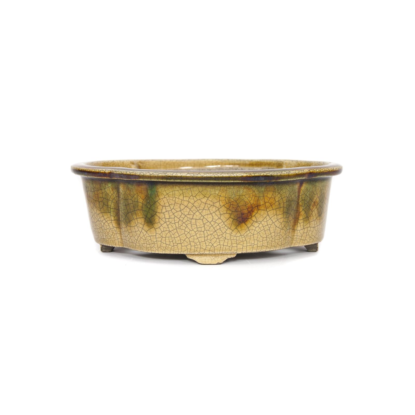Maceta de bonsai Mazan Terahata MA-0012