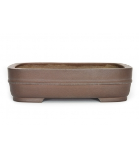 Bonsai Pot Kukuzan Used