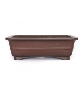Bonsai Pot Katsuzan Used
