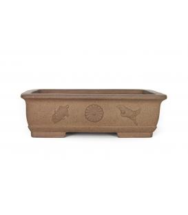 Bonsai usato Harumatsu Ryokumisai vaso